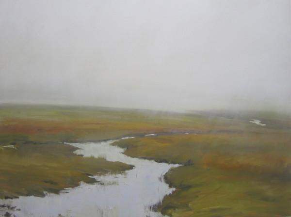 Wetlands Mist