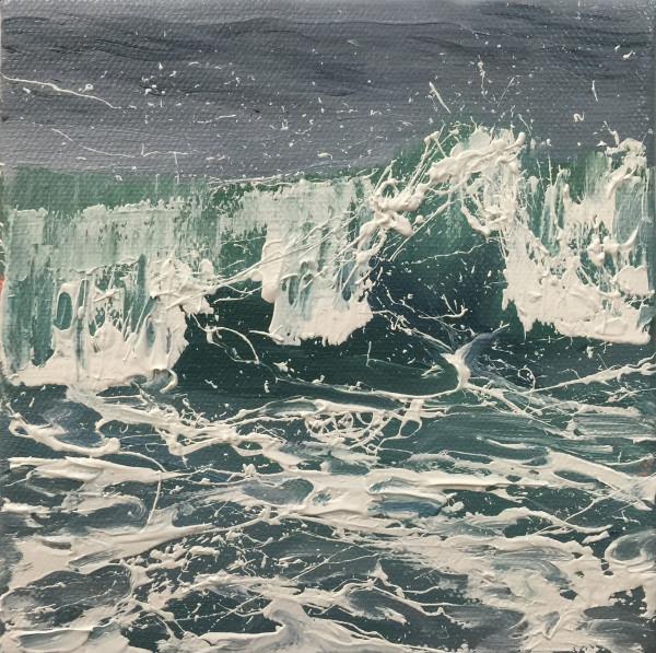 Salty Surf III