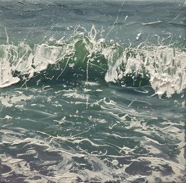 Salty Surf IV