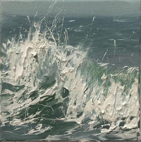 Salty Surf V
