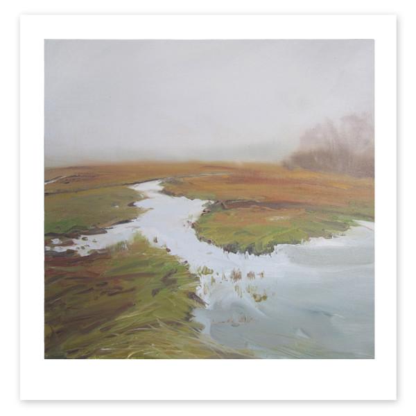 Wetlands Fog