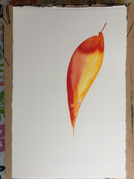 Single red and yellow leaf