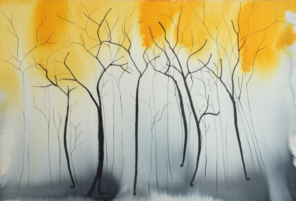 Forest - skinny trees