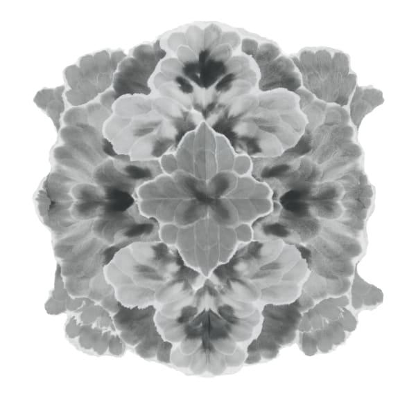 Mandala-Autumnal Equinox V