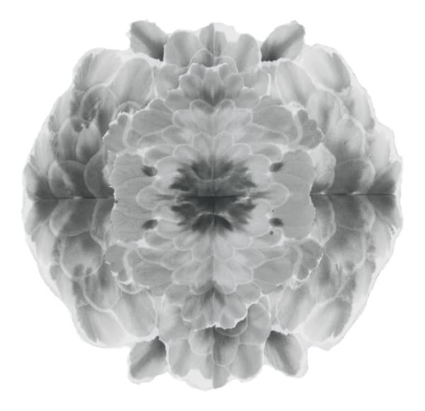 Mandala-Autumnal Equinox VII