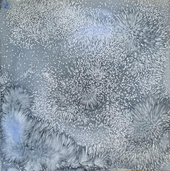 Hibernal Solstice 5
