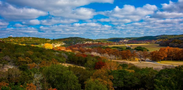Hill Country Vibrance