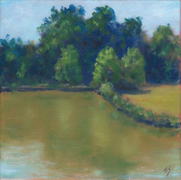 Meadowlands Pond (study) 36.06123N  79.07744W