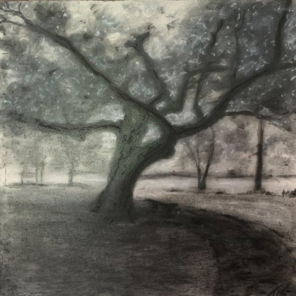 Hollow Tree Rest (study) 36.07803N 79.08378W