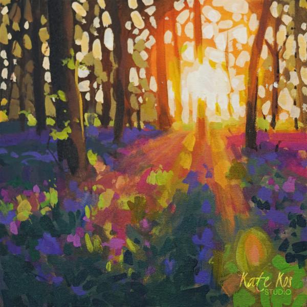 Bluebell's Sunrise