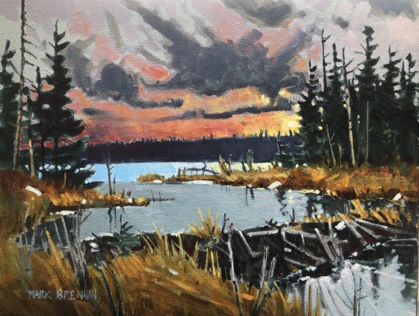 Winter Beaver Dam, Grassy Lake, Nova Scotia