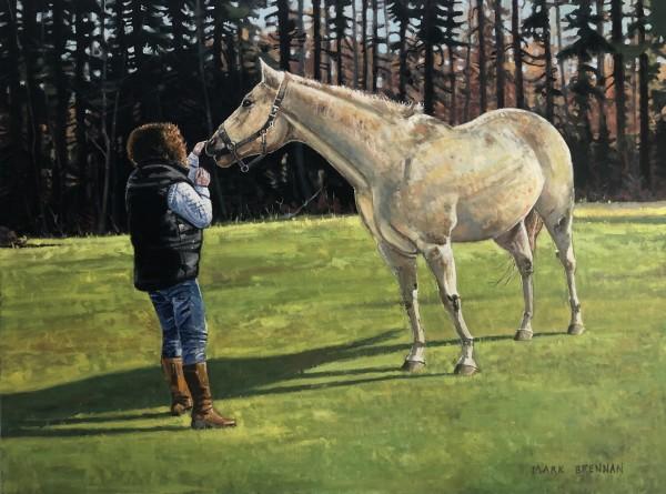 An Encounter With A Horse, River John, Nova Scotia