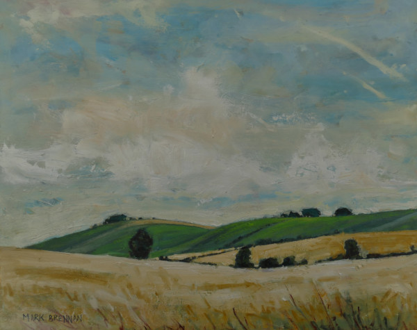 August, The Wiltshire Downs, England