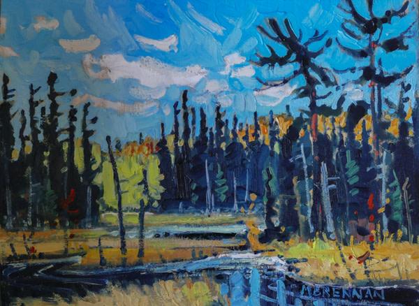 Algonquin Samp, Northern Ontario