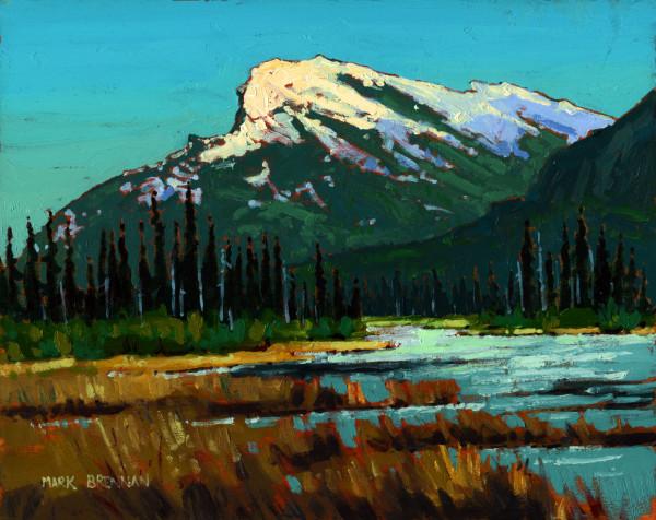 Spring Wetland, Banff National Park