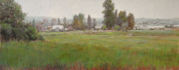 Colorado Pastures