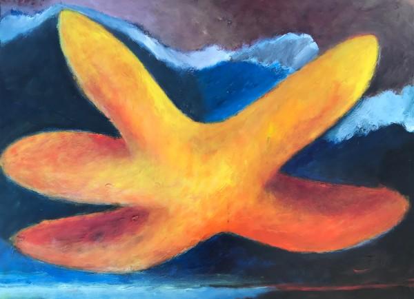1263 Starfish