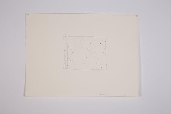 T.V. Bulge Sketch
