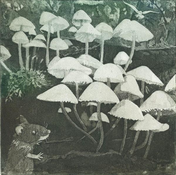 LON174, Funghi