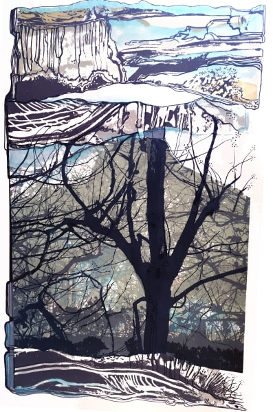MCD170, Craggy Tree
