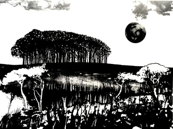 MCD157, Seeking New Landscapes 2