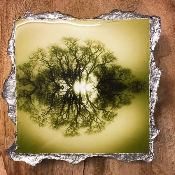 WEL147, Duotone 20 Green