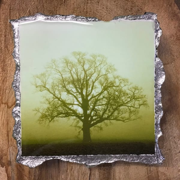 WEL151, Duotone Sunrise Silhouette Green