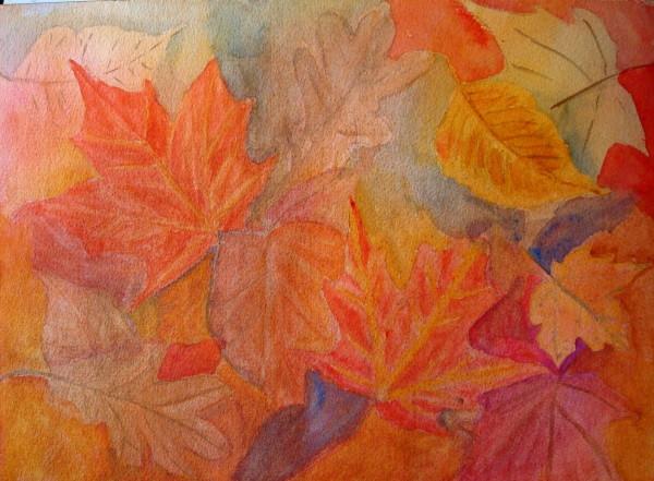 Fall leaves 8