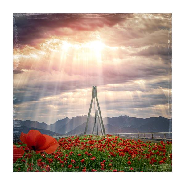 The Bridge of Poppies   #2/30
