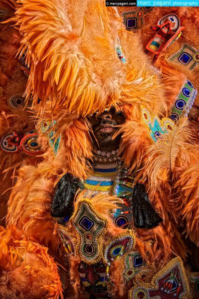 Mardi Gras Indian Study #4 - Super Sunday