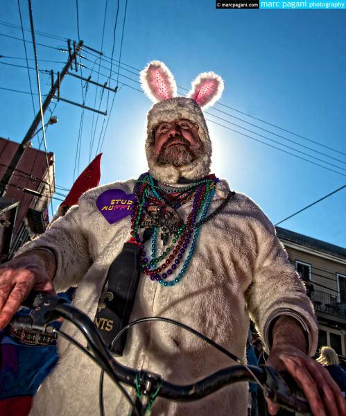 Stud Muffin - Mardi Gras Day