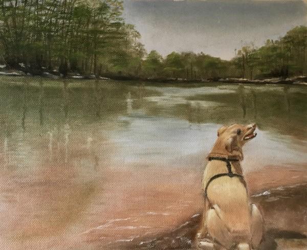 Duke at Lake Norman