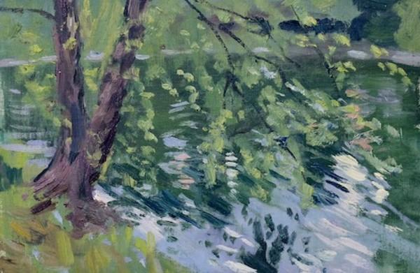 River Birch along Chickasaw Gardens Lake