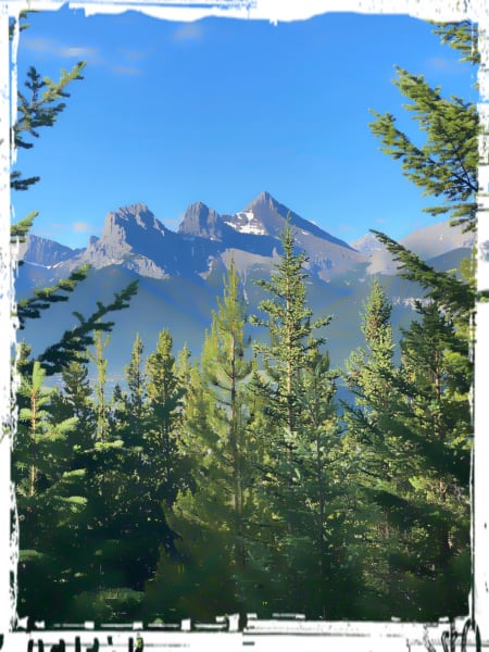 Bow  Valley - Trail Running