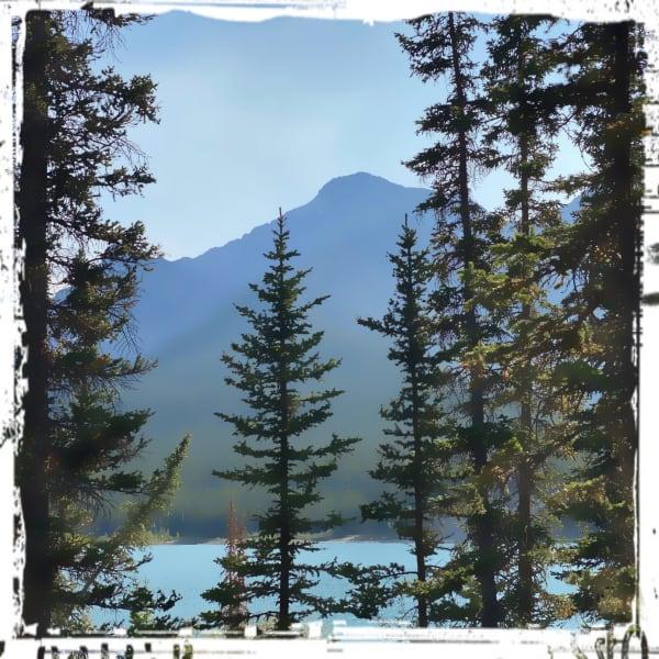 High Rockies - Trail Run