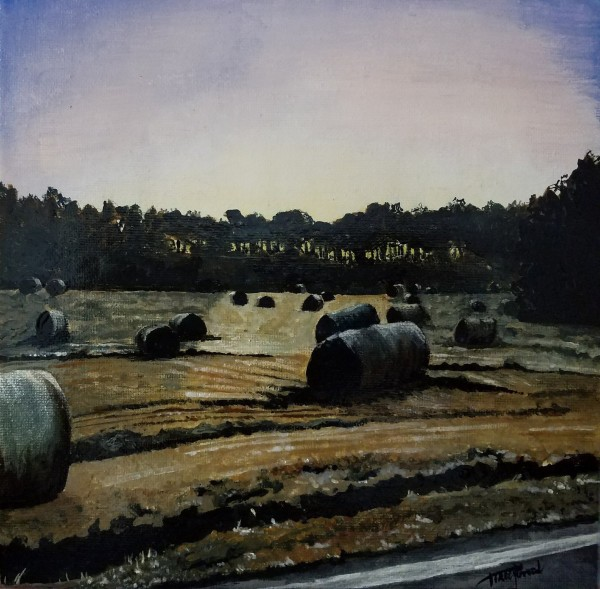 January Morning:  Frost on Hay Bales