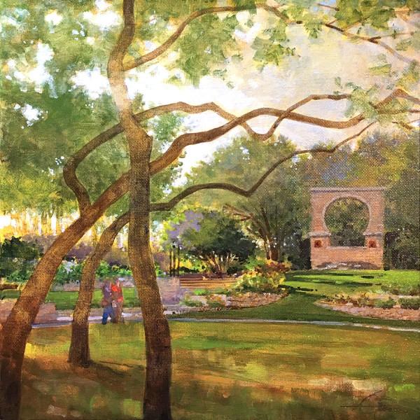 Butler Window Morning - Zilker Botanical Garden Austin, Texas
