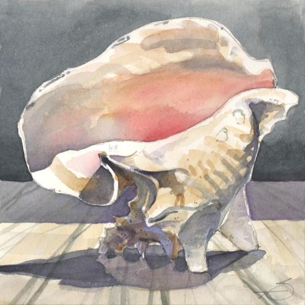 Conch Shell Watercolor