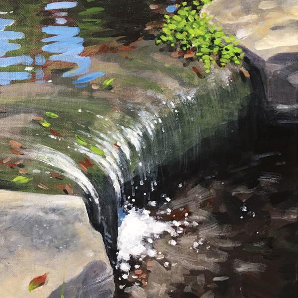 Low Rock Waterfall - Zilker Botanical Garden Austin, Texas