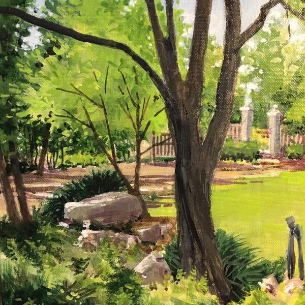Springtime Shade - Zilker Botanical Garden Austin, Texas