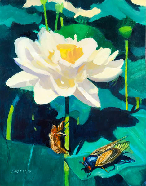 Lotus Blossom And Cicada