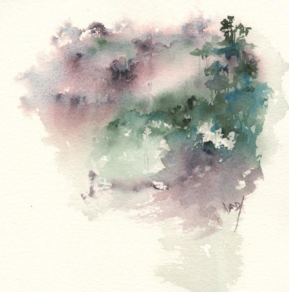 Rainforest in the Rain