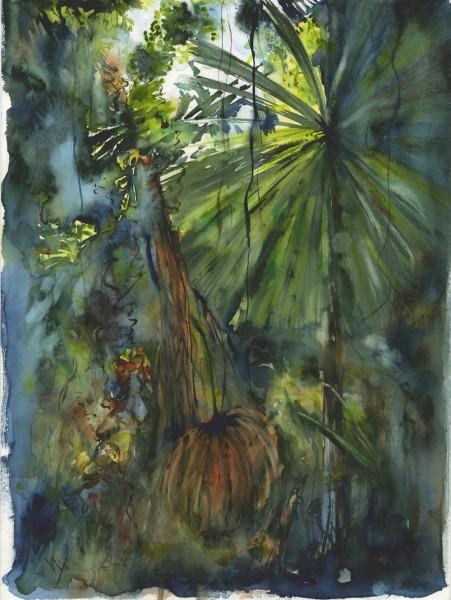Licuala Palm: Circle of Life