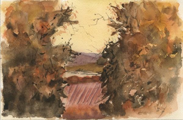 Through the Gap: Wandlebury
