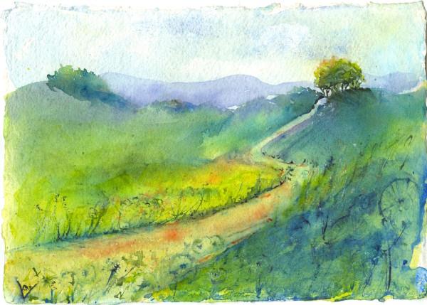 Dandelion Path