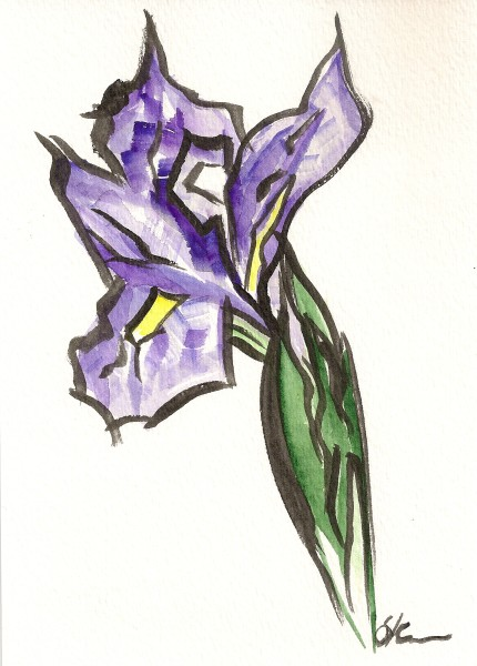 Iris Outlined