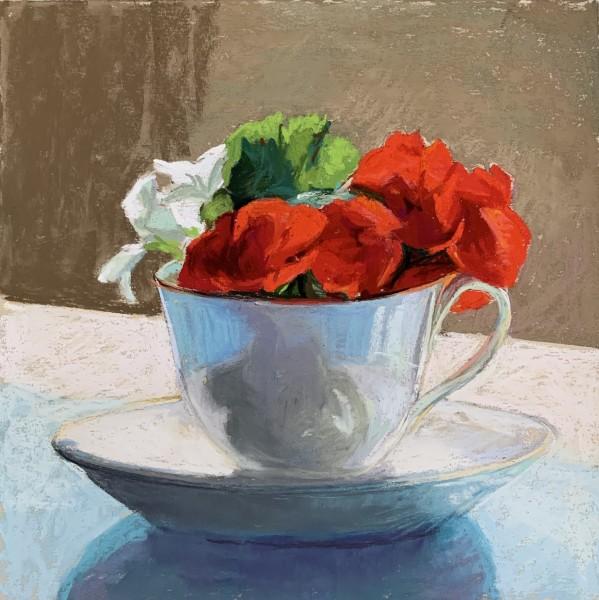 Teacup Begonias
