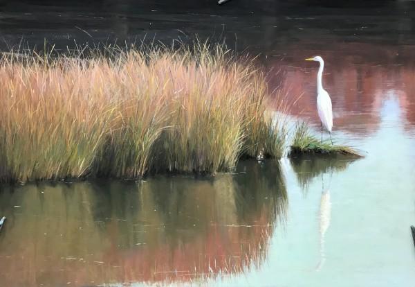 Egret in Fall Marsh