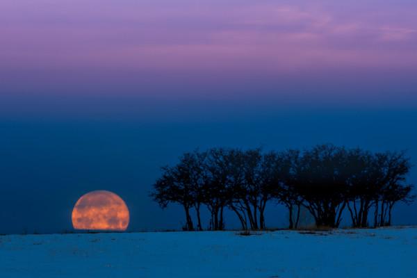 Snow Moon Down