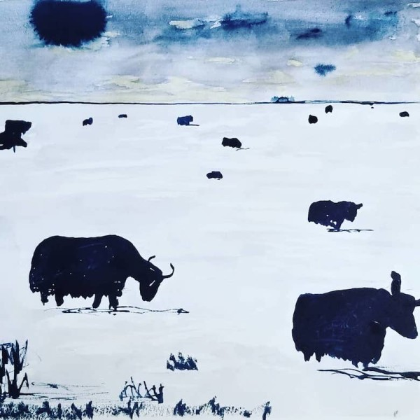 Yaks on the Plains